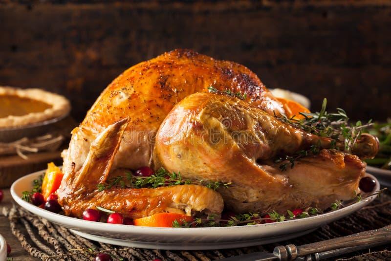Eigengemaakt Geroosterd Thanksgiving day Turkije stock afbeeldingen