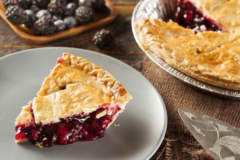 Eigengemaakt Organisch Berry Pie royalty-vrije stock foto's