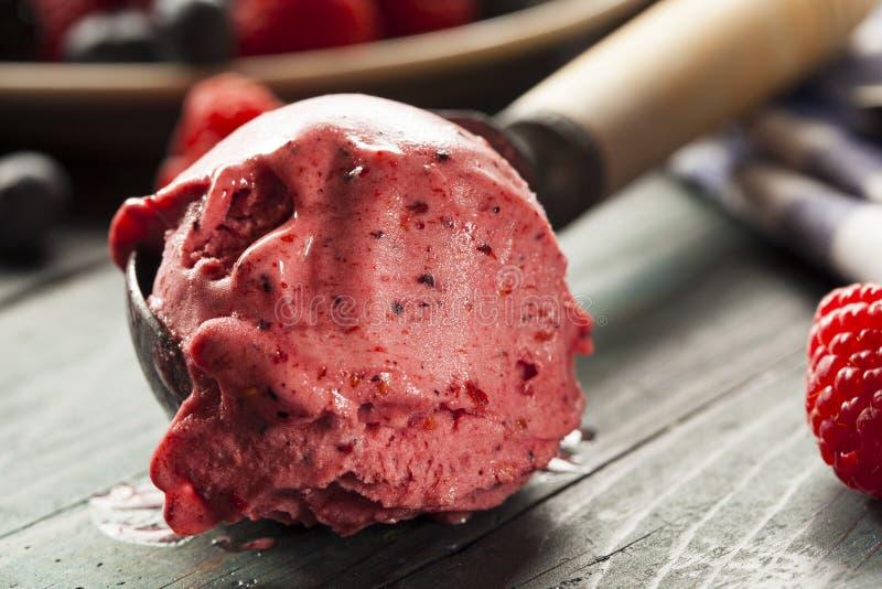 Eigengemaakt Organisch Berry Sorbet Ice Cream stock afbeelding