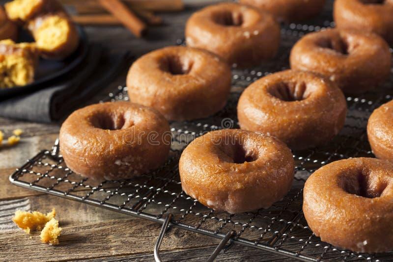 Eigengemaakt Verglaasd Autumn Pumpkin Donuts stock foto