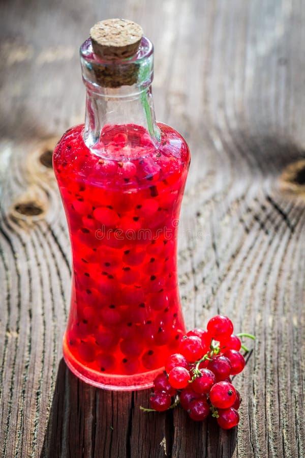 Eigengemaakte die likeur van alcohol en redcurrants wordt gemaakt royalty-vrije stock foto's