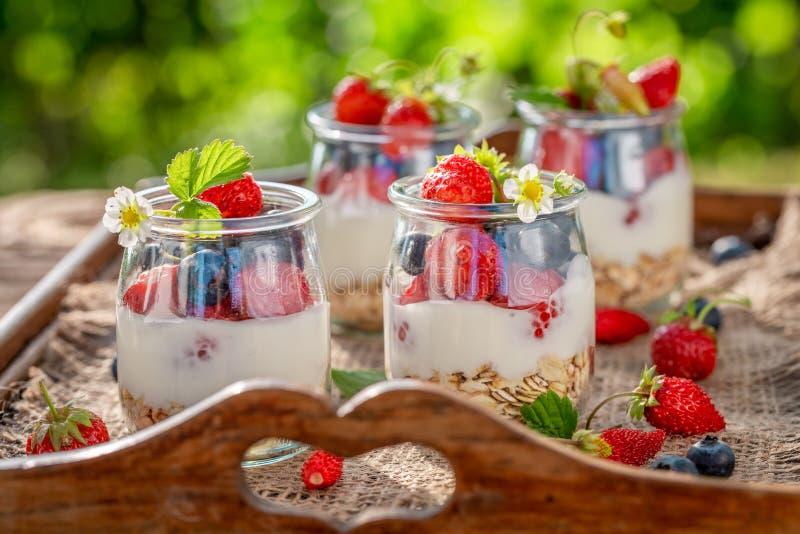 Eigengemaakte en gezonde granola met bessen en yoghurt in kruik stock fotografie