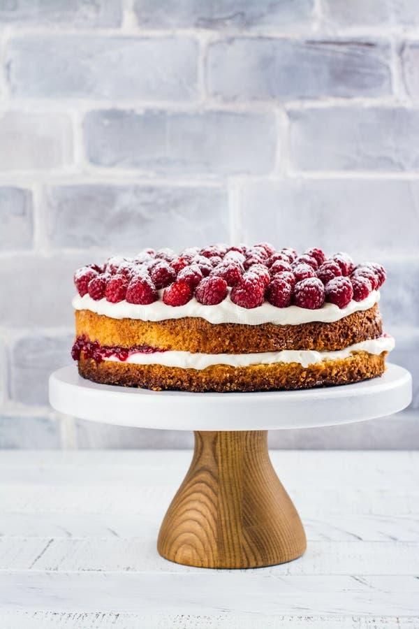 Eigengemaakte frambozencake stock fotografie