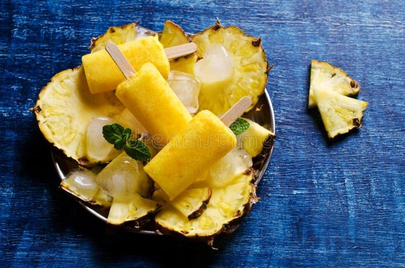 Eigengemaakte fruitijslolly stock afbeelding