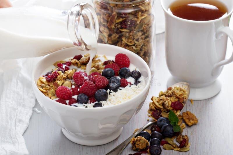 Eigengemaakte granola met bessen stock foto