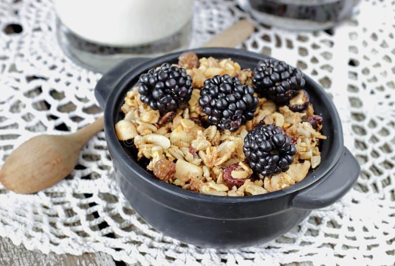 Eigengemaakte granola met yoghurt en braambes, gezond ontbijt stock foto's