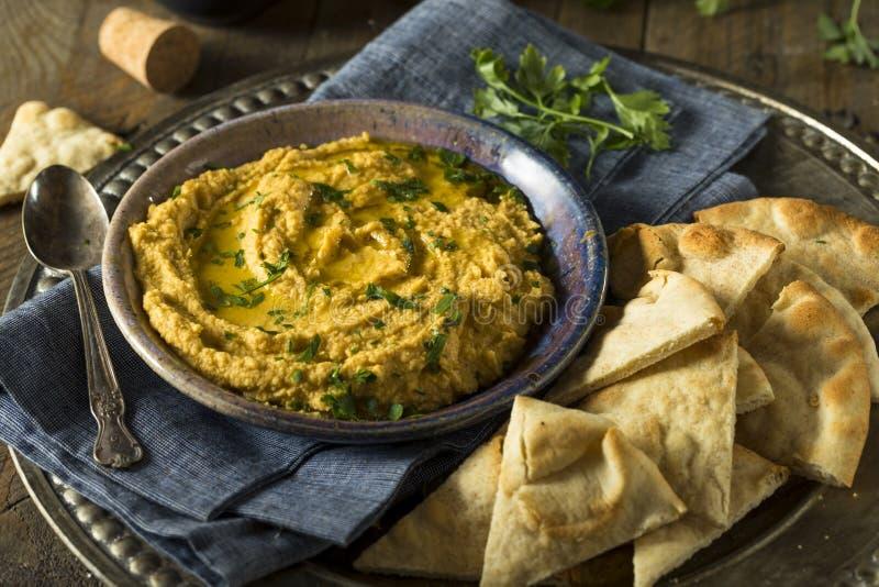 Eigengemaakte Griekse Pompoen Hummus royalty-vrije stock afbeelding