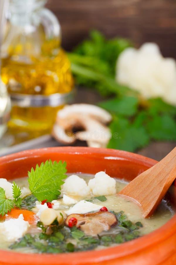 Eigengemaakte groente en paddestoelroomsoep royalty-vrije stock afbeelding