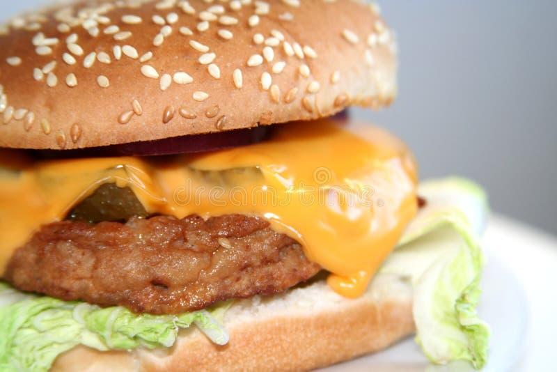 Eigengemaakte hamburger, close-up stock fotografie