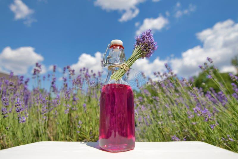 Eigengemaakte Lavendelstroop royalty-vrije stock fotografie