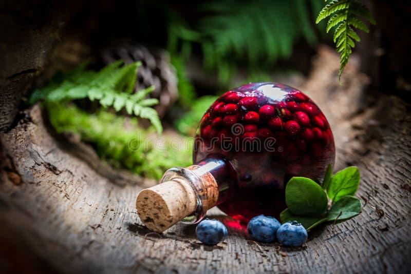 Eigengemaakte likeur met bosbessen en alcohol stock afbeelding