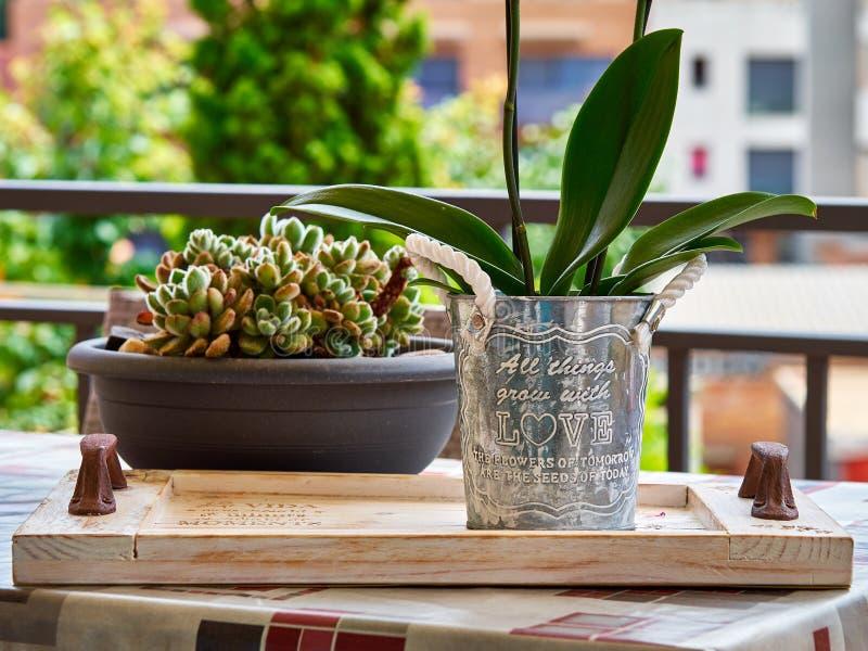 Eigengemaakte pot met liefdebericht en cactus op de achtergrond stock afbeeldingen