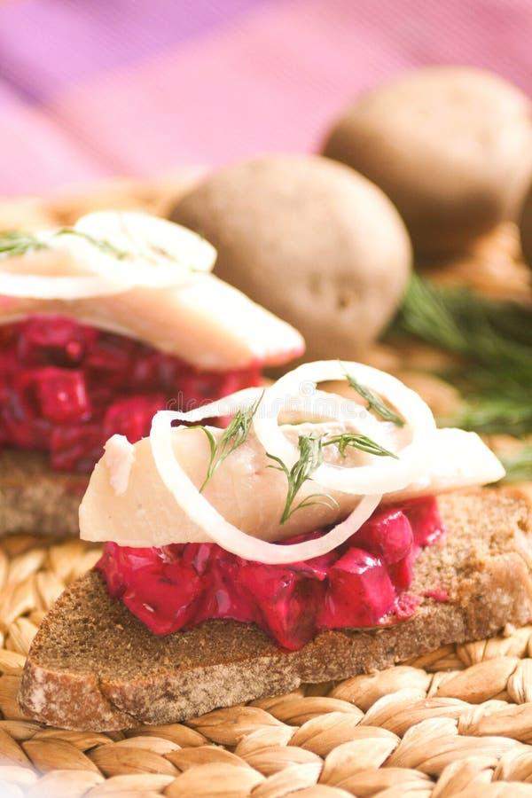 Eigengemaakte Sandwich met bieten en haringen stock foto