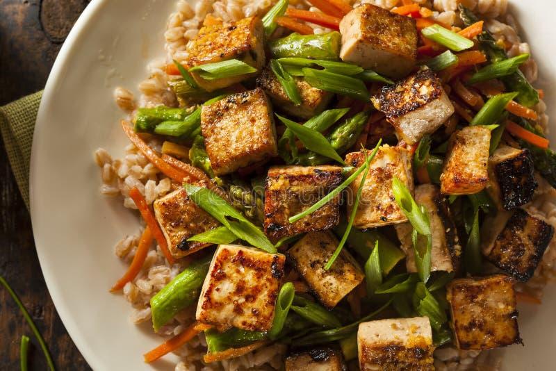 Eigengemaakte Tofu beweegt Gebraden gerecht royalty-vrije stock afbeeldingen