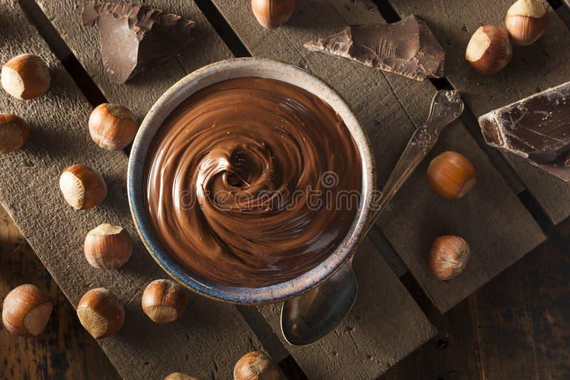 Eigengemaakte Uitgespreide Chocoladehazelnoot stock afbeeldingen
