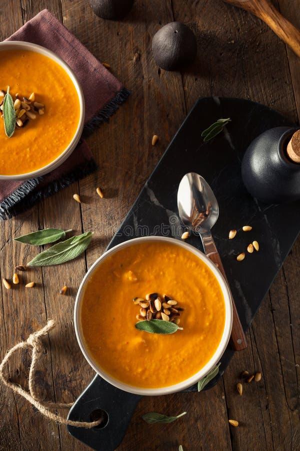 Eigengemaakte Wortel Ginger Soup royalty-vrije stock afbeeldingen