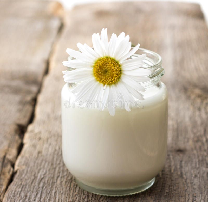 Eigengemaakte yoghurt royalty-vrije stock afbeelding