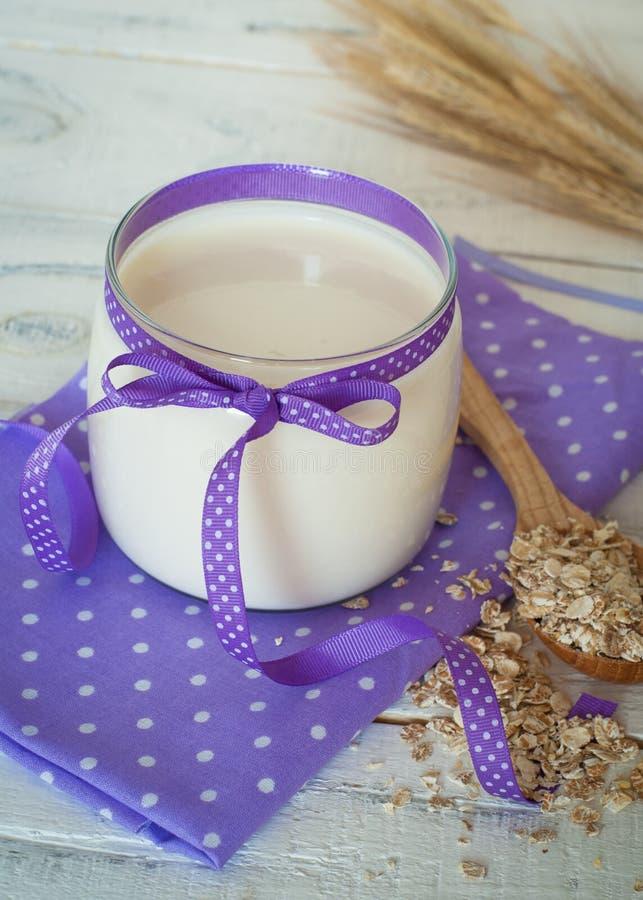 Eigengemaakte yoghurt royalty-vrije stock fotografie
