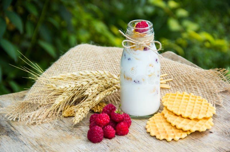 Eigengemaakte yoghurt met graangewassen en vruchten in een fles Verse organische frambozen en wafels stock foto's