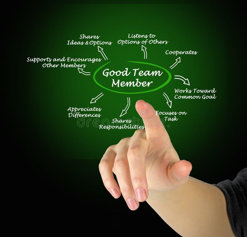 Eigenschaften von gutem Team Member stockfotos