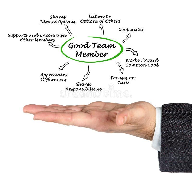 Eigenschaften von gutem Team Member stockbilder