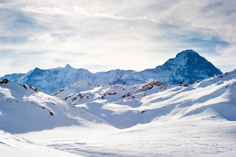 Eiger acima de Grindelwald fotos de stock royalty free