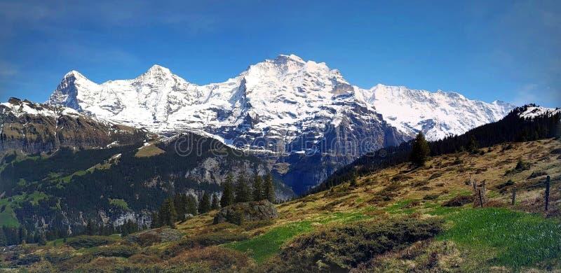 Eiger et Jungrau dans les Alpes suisses image stock