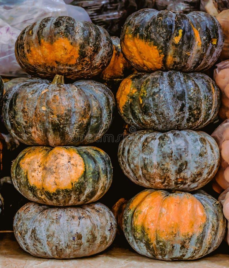 Eight big pumpkins stock photos