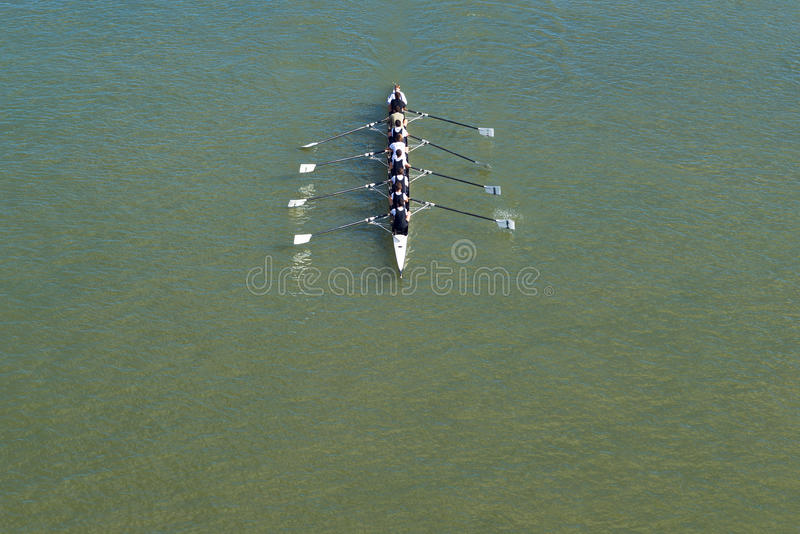 Eight men rowing on Danube river royalty free stock photo