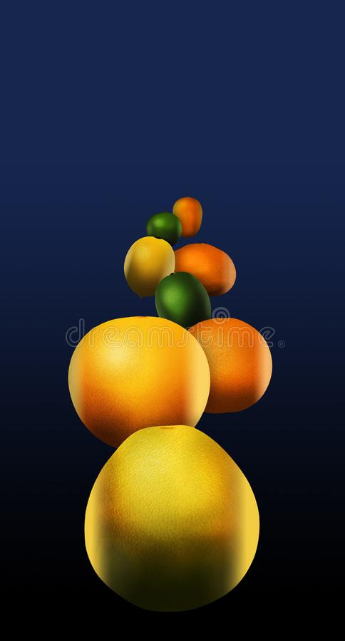 Eight popular citrus fruits are pictured. These include: pomelo royalty free illustration