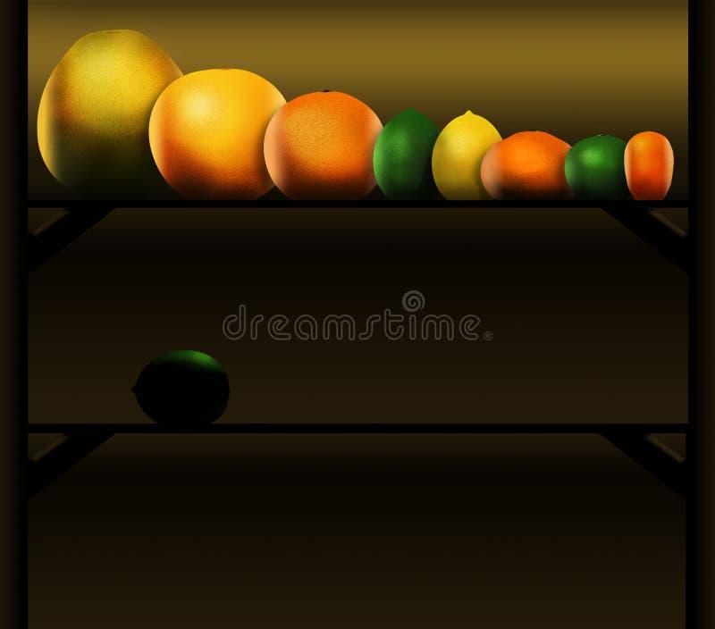 Eight popular citrus fruits are pictured left to right: pomelo, grapefruit, orange, lime, lemon, tangerine, key lime and kumquat royalty free illustration