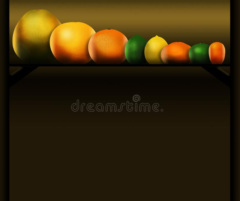 Eight popular citrus fruits are pictured left to right: pomelo, grapefruit, orange, lime, lemon, tangerine, key lime and kumquat vector illustration