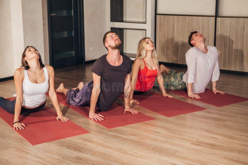 Eignungsgruppe, die Kobrahaltung in der Reihe an der Yogaklasse tut stockbilder