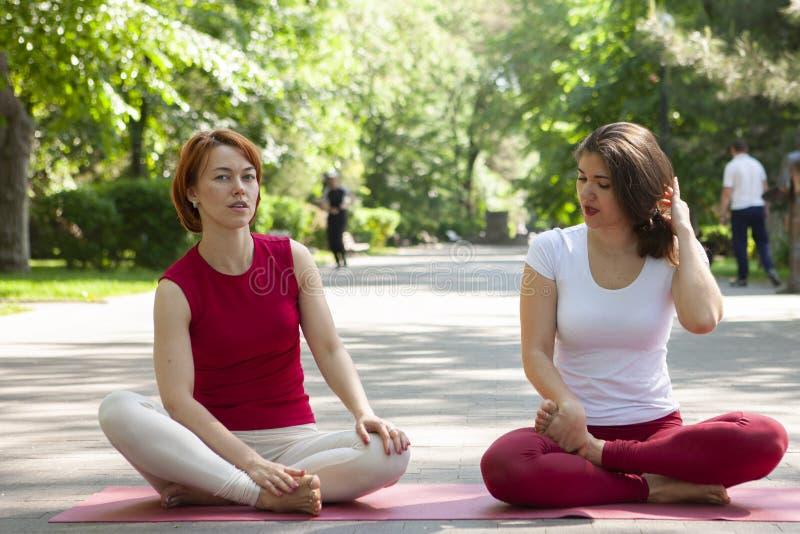 Eignungsgruppe, die Yoga im Park Haltungsbaum tut workout lizenzfreie stockfotos