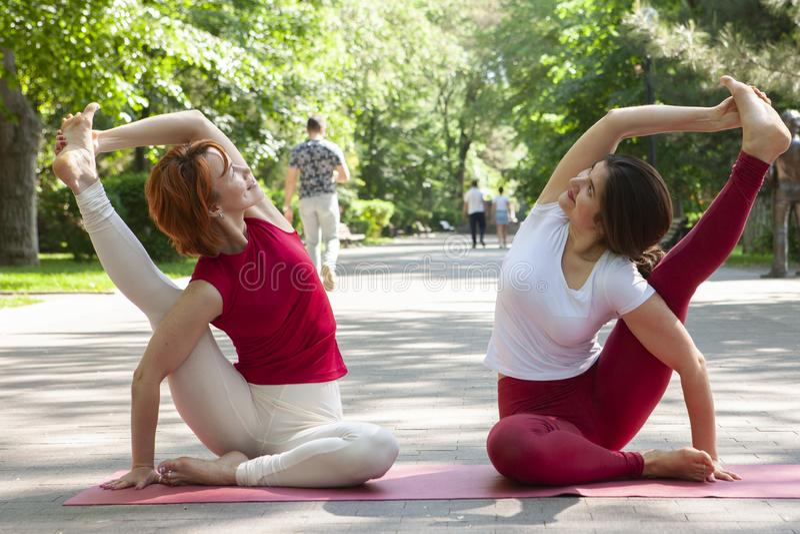 Eignungsgruppe, die Yoga im Park Haltungsbaum tut workout lizenzfreies stockbild