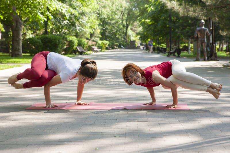 Eignungsgruppe, die Yoga im Park Haltungsbaum tut workout stockfotografie