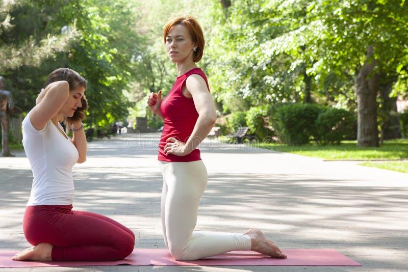Eignungsgruppe, die Yoga im Park Haltungsbaum tut workout stockbilder