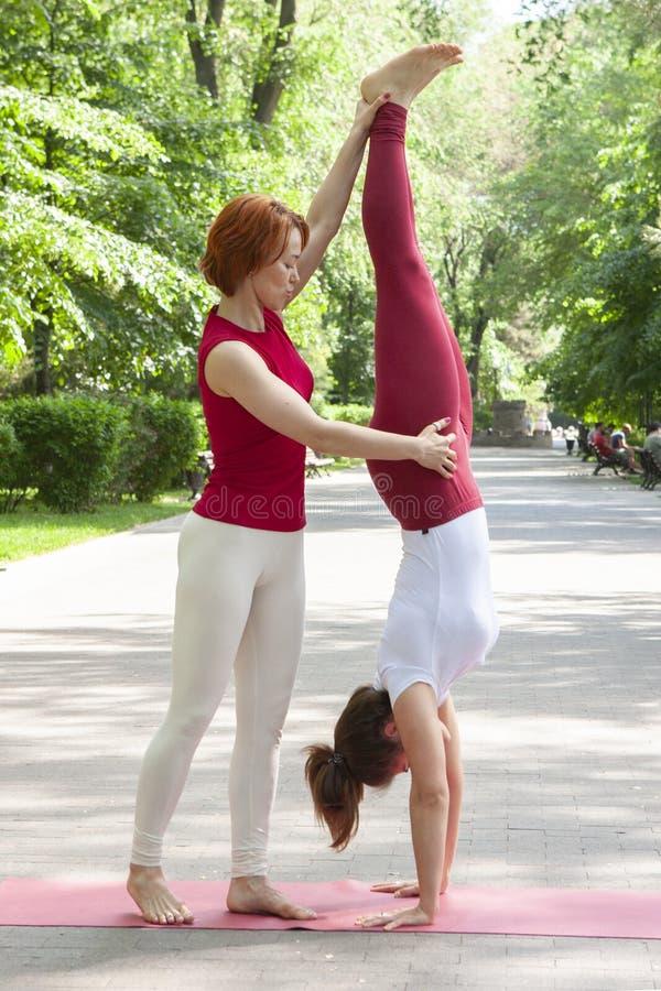 Eignungsgruppe, die Yoga im Park Haltungsbaum tut workout stockbild
