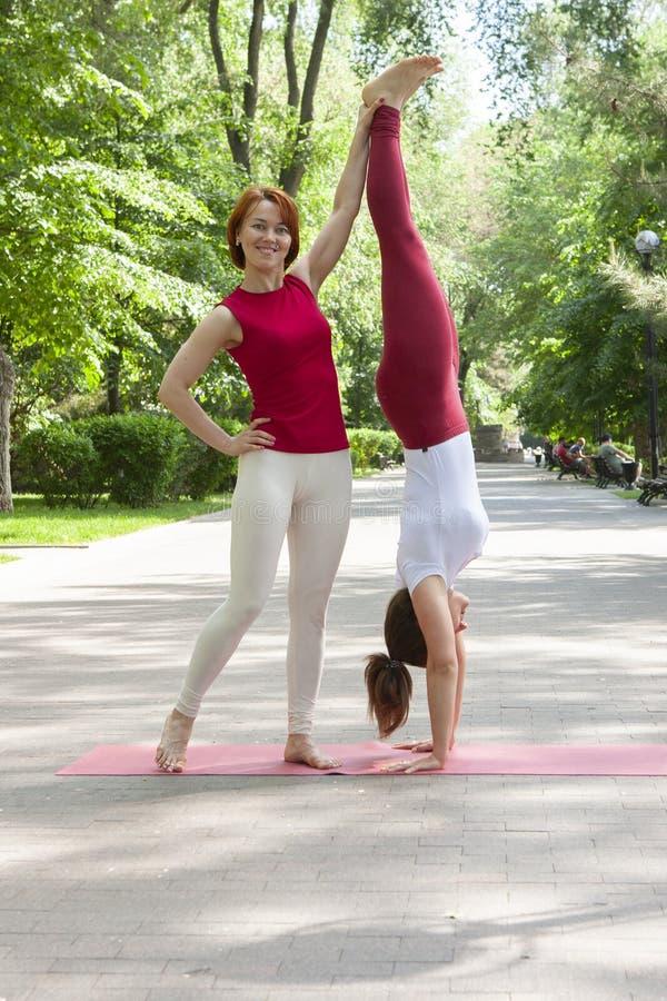 Eignungsgruppe, die Yoga im Park Haltungsbaum tut workout stockfotos