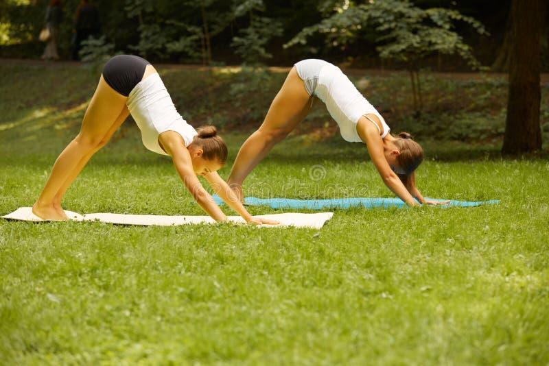 Eignungsklasse Schöne junge Frauen, die Übung an Sommer-PA tun lizenzfreies stockfoto