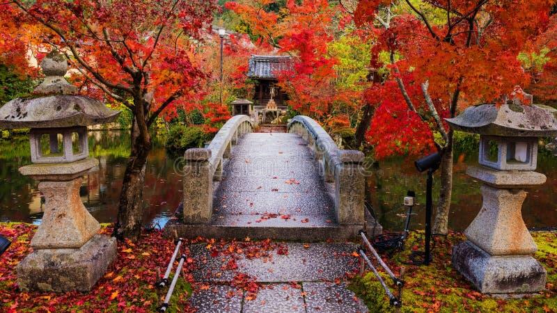 Eikando на осени, Киото стоковая фотография rf