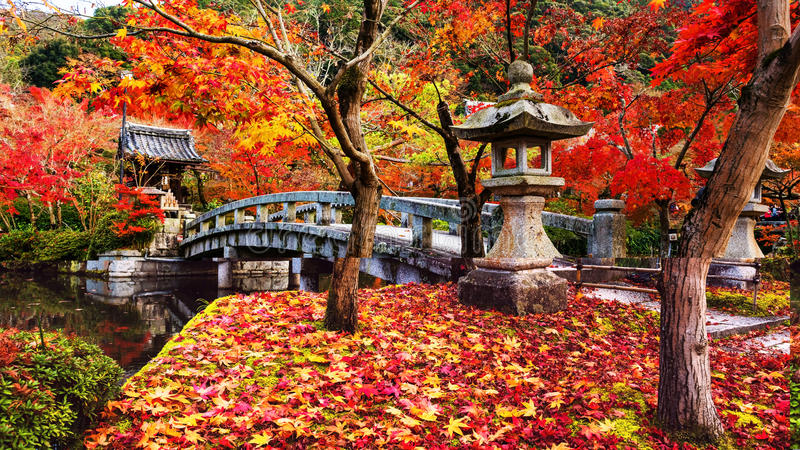 Eikando en el otoño imagen de archivo