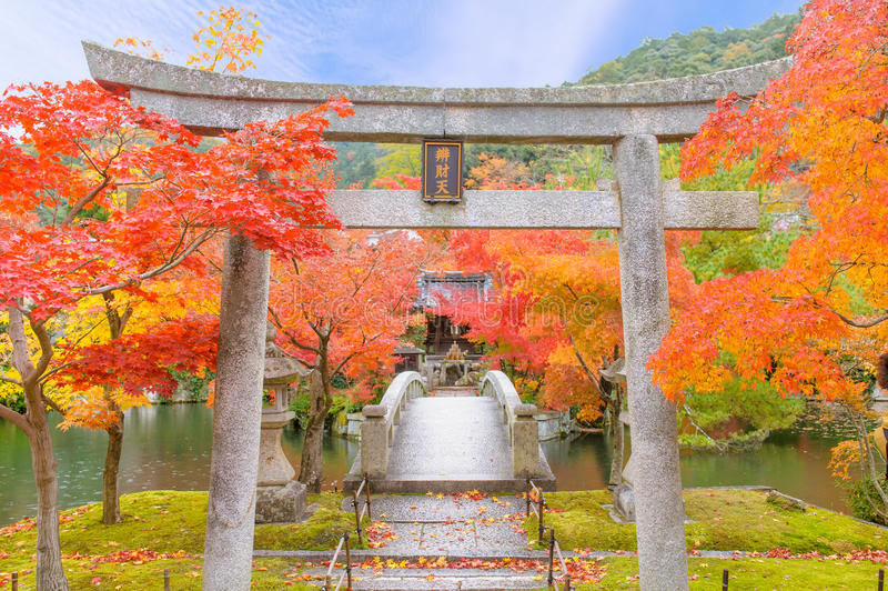 Eikando Zenrinji tempel arkivfoton
