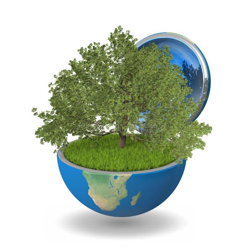 Eiken boom binnen planeet vector illustratie