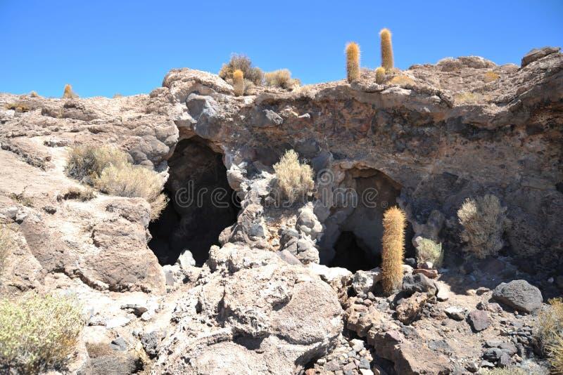 Eiland Inca Wasi - cactuseiland stock fotografie
