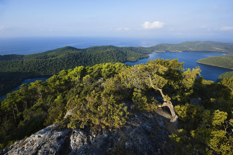 Eiland Kroatië - Mljet royalty-vrije stock foto