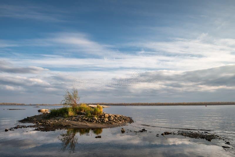 Eiland met een boom op de rivier stock afbeeldingen