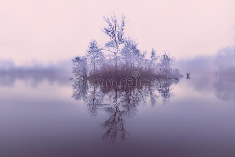 Eiland op het meer stock fotografie