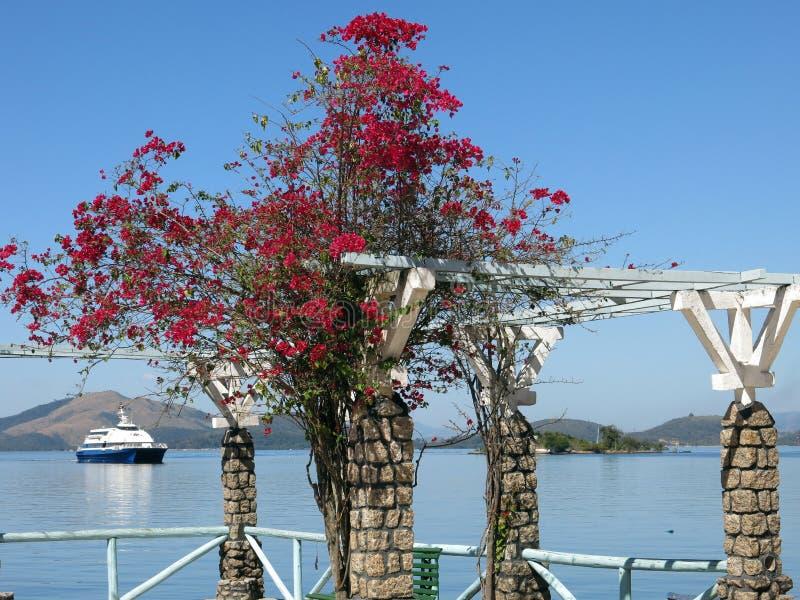 Eiland in Rio de Janeiro-stad stock foto's