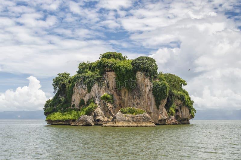 Eiland, rots in de Atlantische Oceaan met groene vegetatie, tegen een achtergrond van de kust op de achtergrond wordt behandeld d royalty-vrije stock fotografie